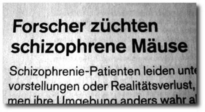 Forscher züchten schizophrene Mäuse