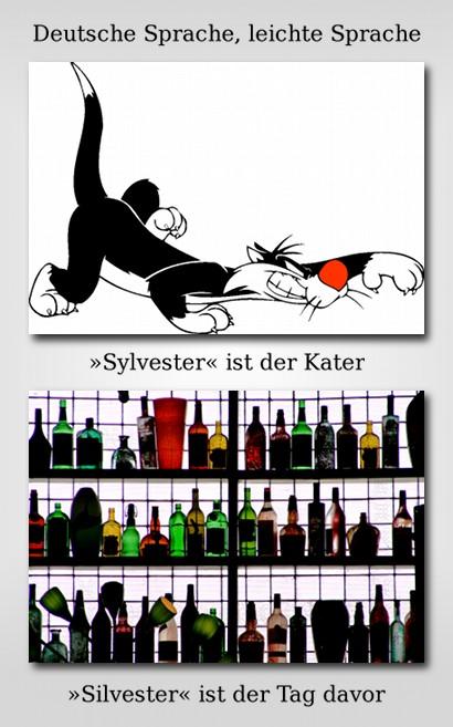 Deutsche Sprache, leichte Sprache: Sylvester ist der Kater. Silvester ist der Tag davor.