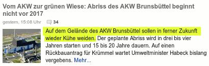 Auf dem Gelände des AKW Brunsbüttel sollen in ferner Zukunft wieder Kühe weiden.