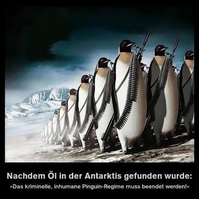 Nachdem Öl in der Antarktis gefunden wurde: Das kriminelle, inhumane Pinguin-Regime muss beendet werden!