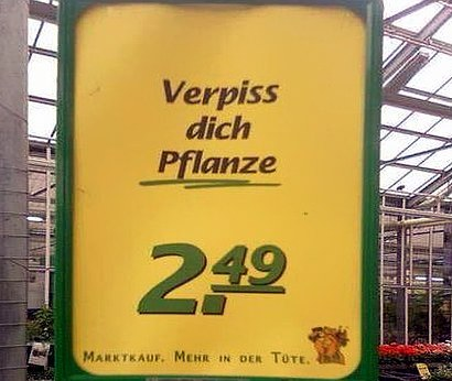 Verpiss dich Pflanze 2,49 -- Marktkauf. Mehr in der Tüte