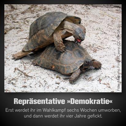 Repräsentative Demokratie -- Erst werdet ihr im Wahlkampf sechs Wochen umworben, und dann werdet ihr vier Jahre gefickt.