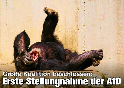 Bild eines vor Lachen am Boden liegenden Affen. Dazu der Text 'Große Koalition beschlossen: Erste Stellungnahme der AfD'.